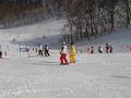 第41回相模原市クラブ対抗スキー大会 13